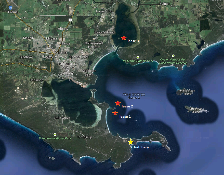 Great Southern Mussels Leases in Australia
